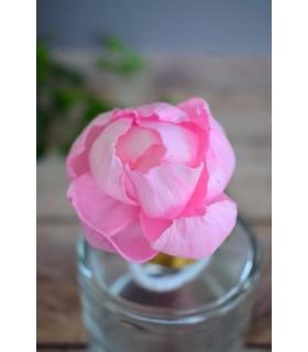 Fleur en bois de sola - Pivoine rose